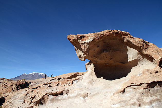 Cobra Rock Bolivia