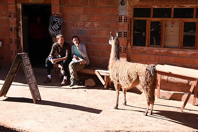 Llama Attack