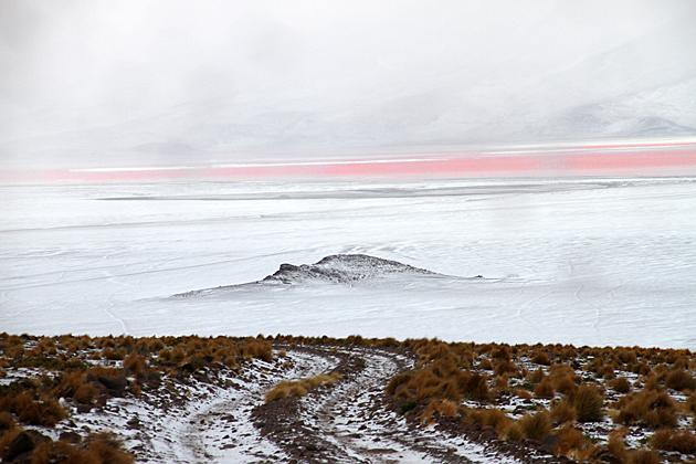 Red Lagoon Snow