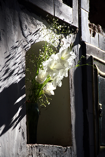Grave Flower
