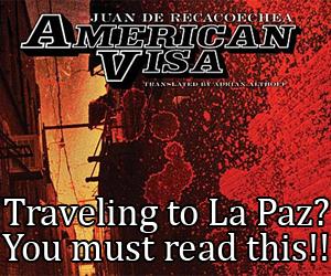 American Visa Book