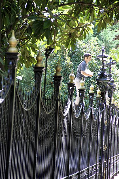 British Fence