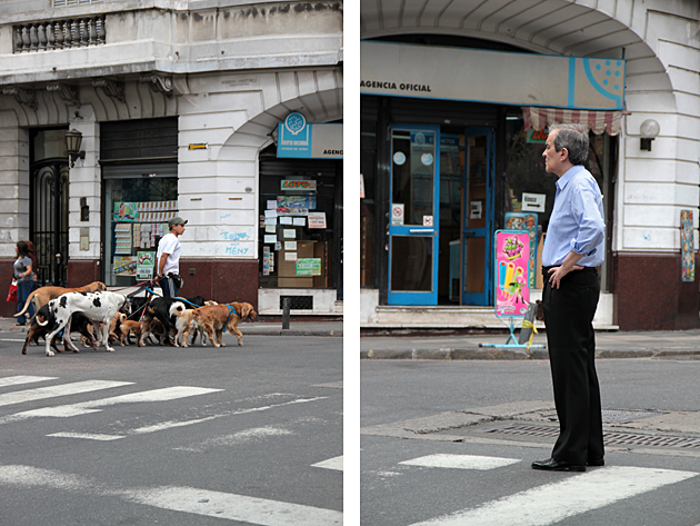 Dog Walker Buenos Aires