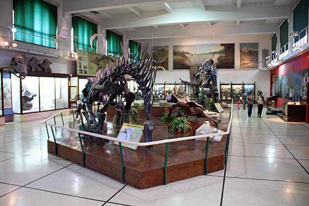 Nature History Museum