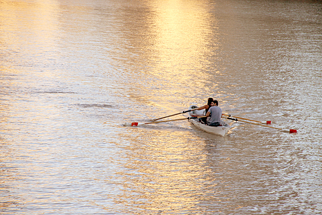 Rowing Buenos Aires