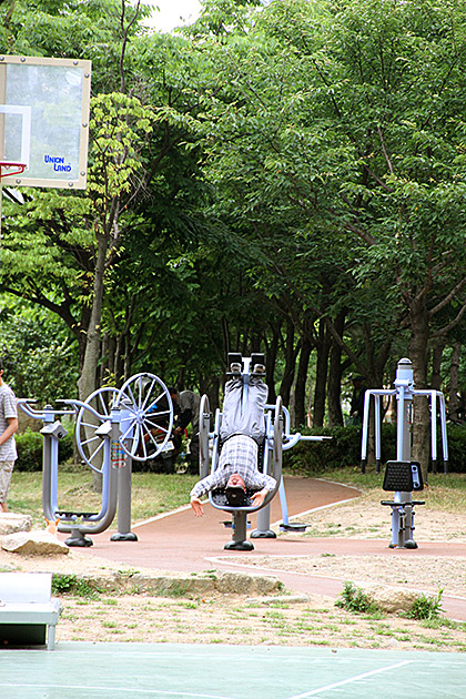 Korean Work Out