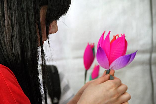 Lotus Making