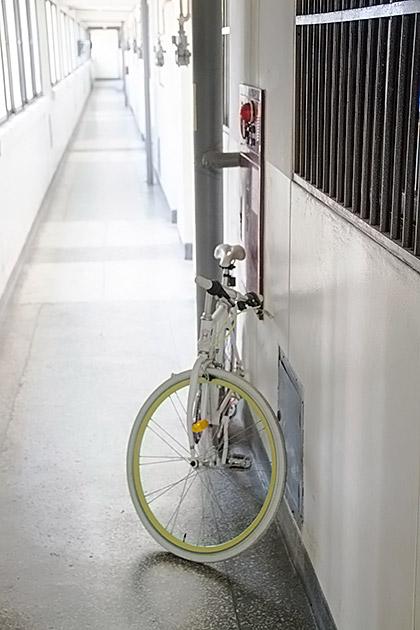 Bike Culture Busan