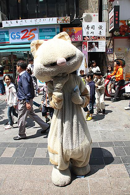 Busan Cat