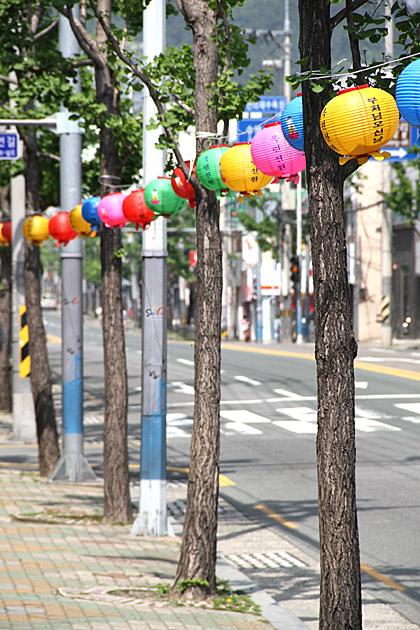 Busan Lanterns
