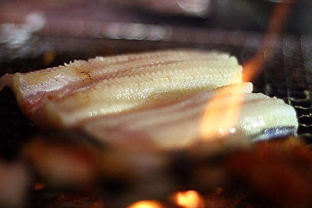 Korean Eel