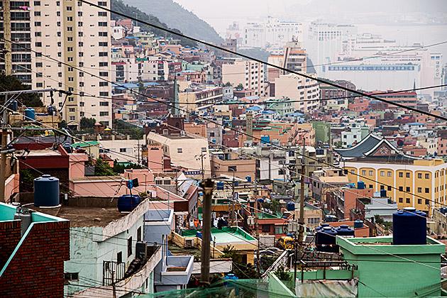 Crazy Busan