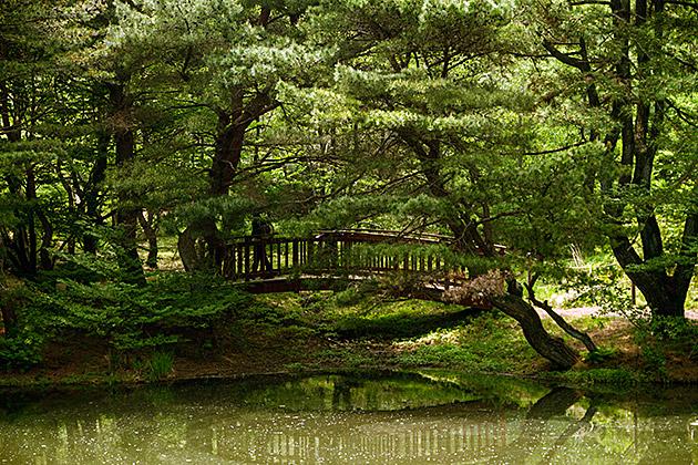 Busan Nature