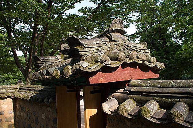 Gyerim-Forest-Gyeongju