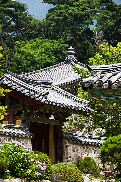 Photo Blog Korea