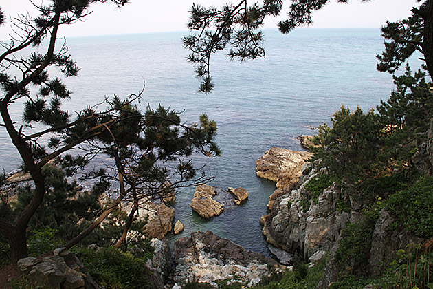 Coastal Hike Busan