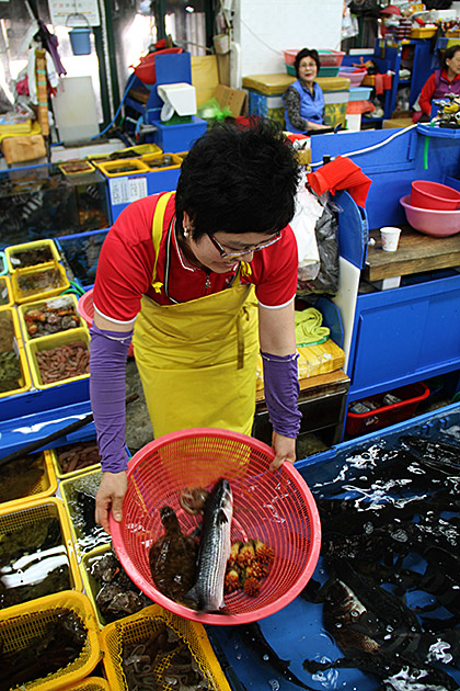 Millak-Raw-Fish-Market