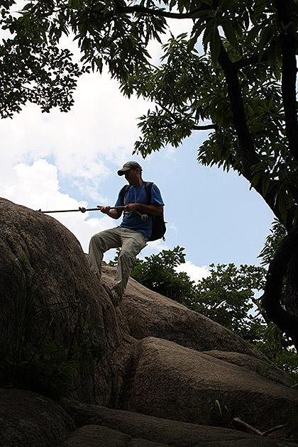 Natural Climber