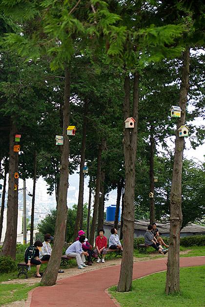 Bird-House-Korea