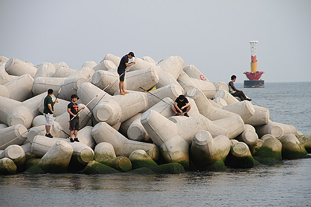 Fishing in Busan