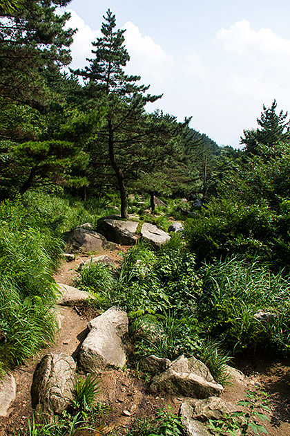 Summer Hike in Korea