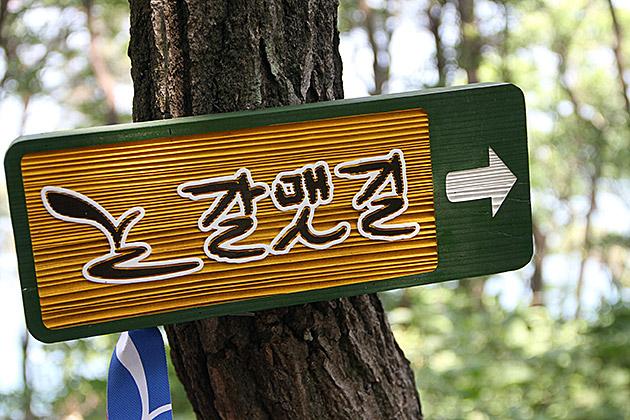 Coastal Hike Busan