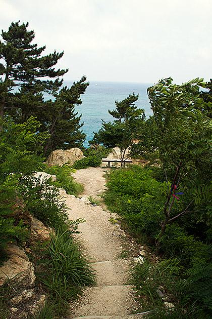 Coastal-Hike-Busan