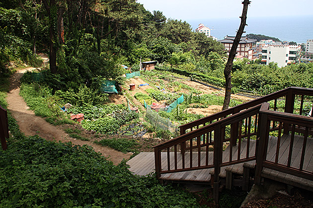 Hiking Korea
