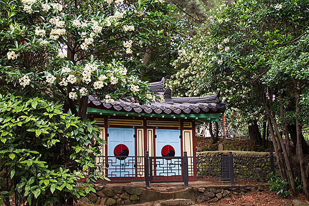 Shrine Korea