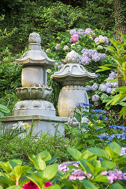 Flower Buddha Temple