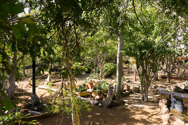 Botanic Garden Curacao