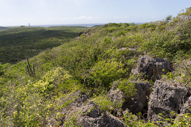 Malpais Hike Curacao