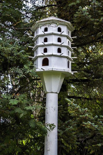 Birdhouse Akureyri