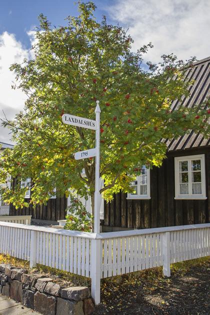 Cute Street Corner Akureyri