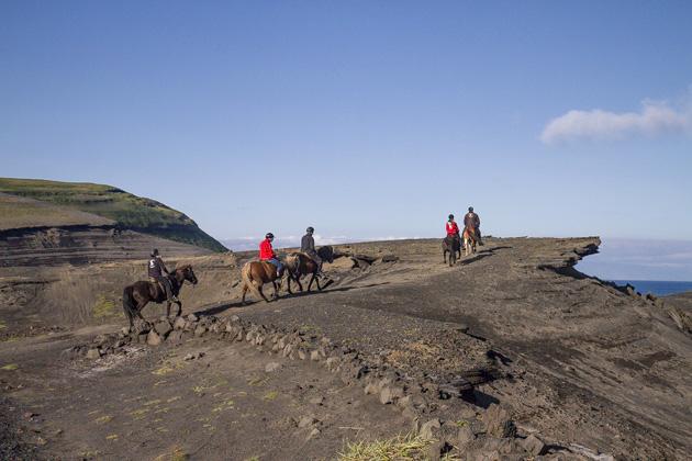 Horseback Riding Heimaey