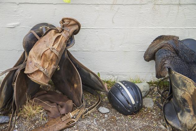 Horse Helmet Iceland
