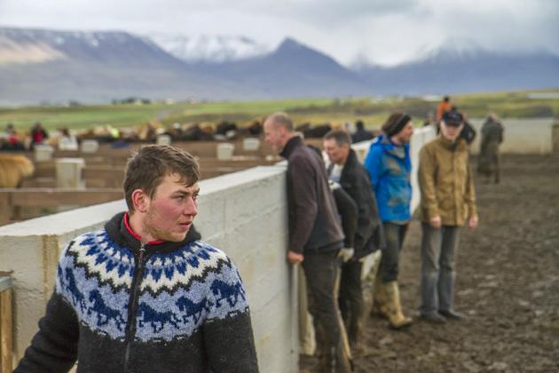 Iceland Teen Boy