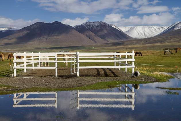 Iceland Skagafjörður