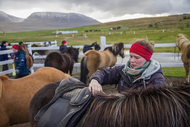 Hestasport Skagafjörður