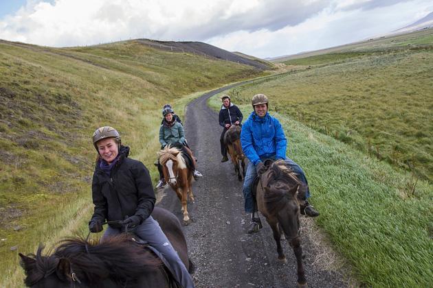 Island Pferde Tour