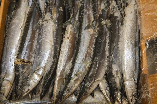 Hrísey Fish