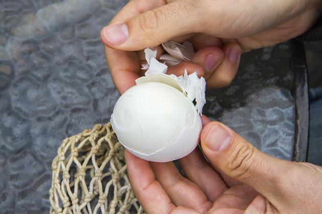 Icelandic Egg