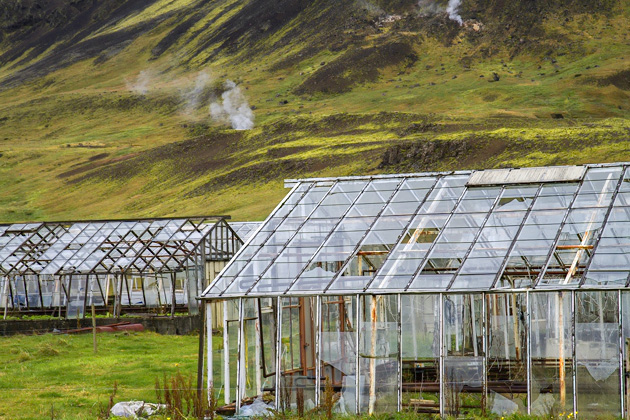 Greenhouse Hveragerði