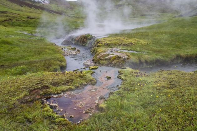 Iceland Hot Stream