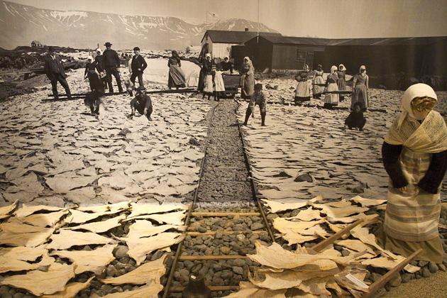 Fish Drying Iceland