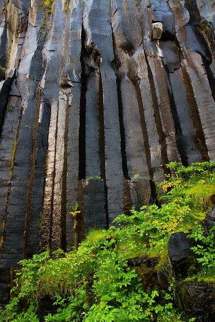 Basalt Columns Svartifoss