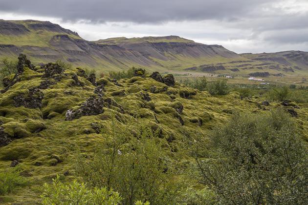 Lava Field Bifröst