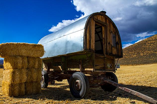 Sheep-Herd-Wagon