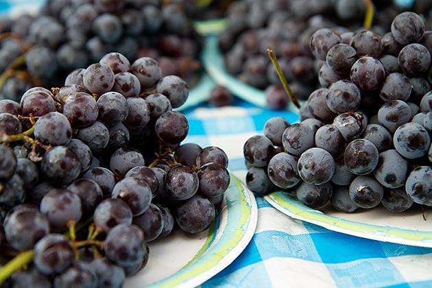 Fresh-Grapes-Idaho