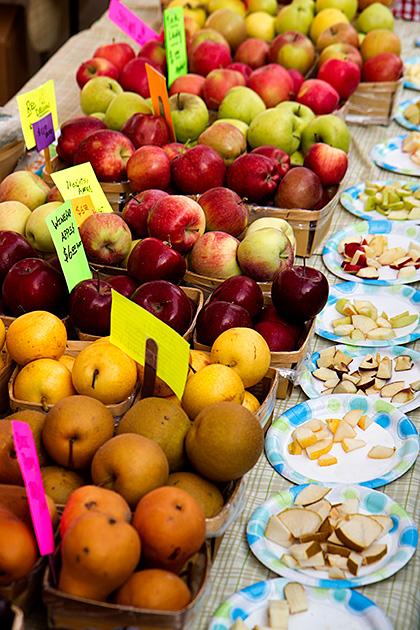 Fruit-Tasting